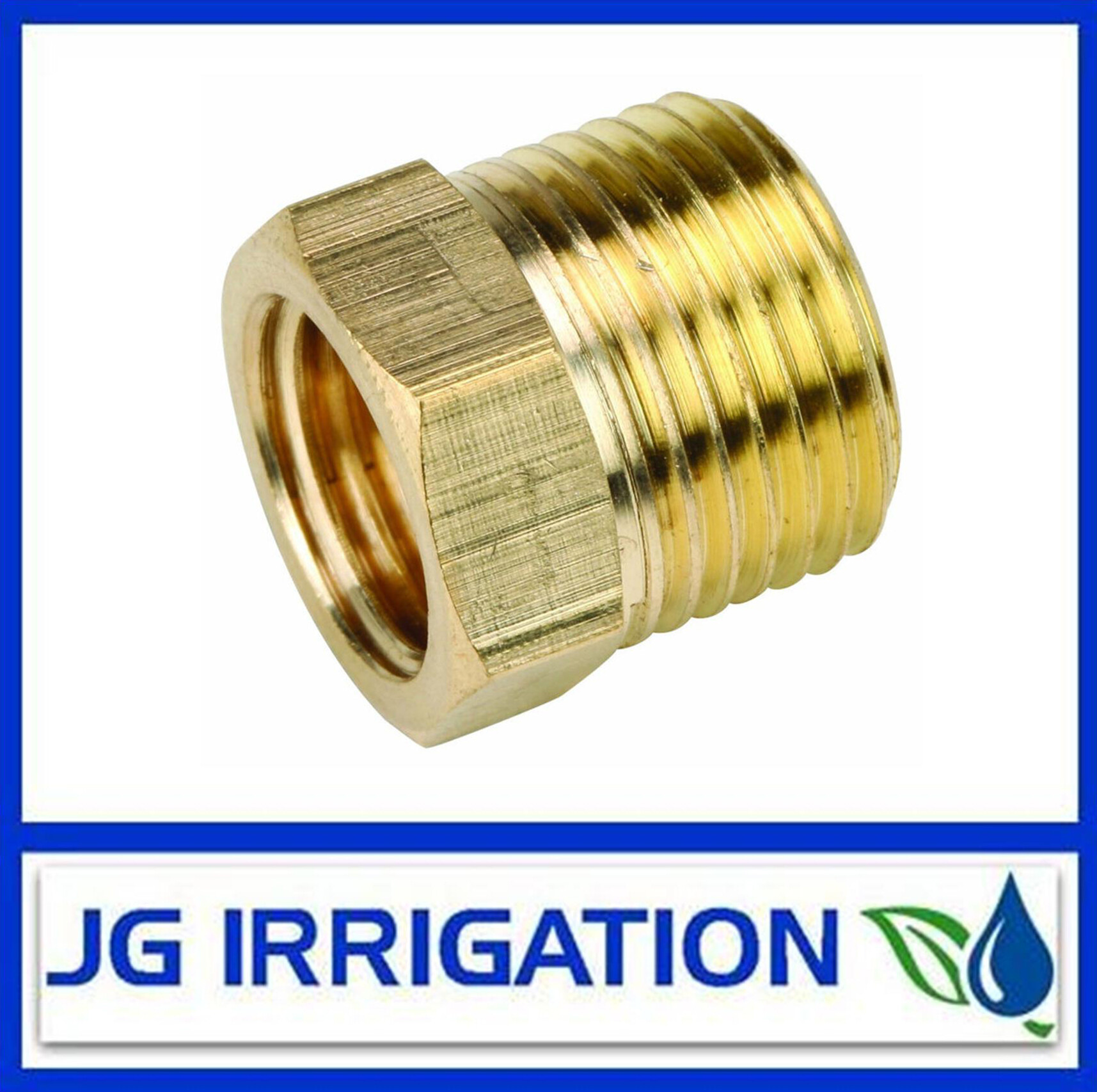 Brass Bush BSP Threaded